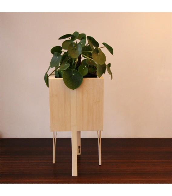 Bloooms planten pot naturel small