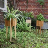 Bloooms planten pot